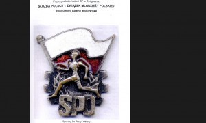 sluzba_polsce